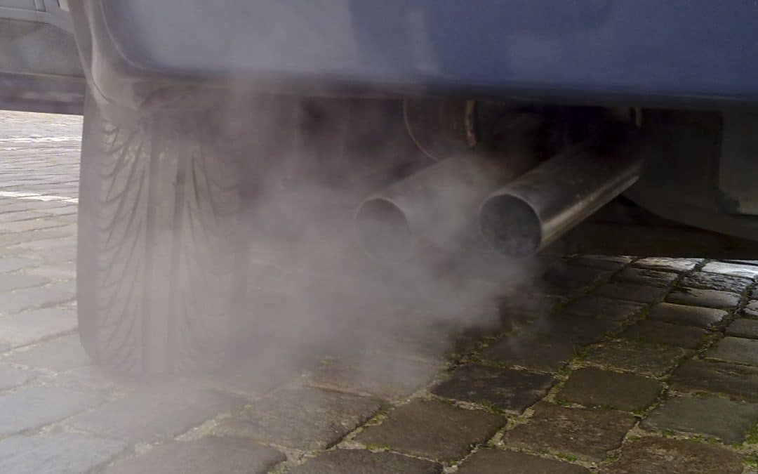 Global carbon emissions level off & European green car sales continue to increase