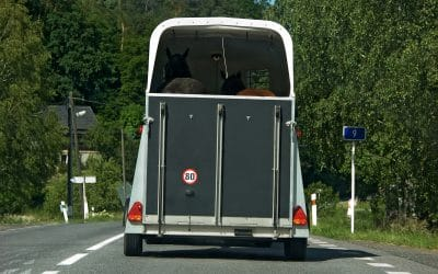 Maintaining your horsebox or trailer