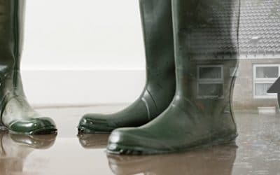 Coping After a Flood